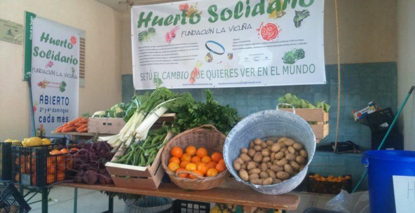 El Huerto Solidario de La Vicuña, en Los Toruños