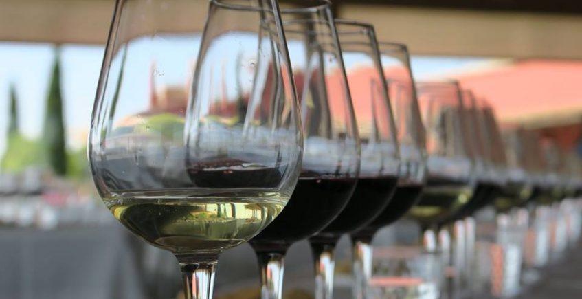 Cata con vinos de Diez-Mérito