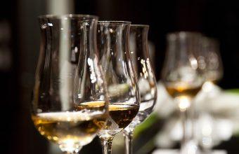 Seminario de introducción a los vinos de Bodegas Barón