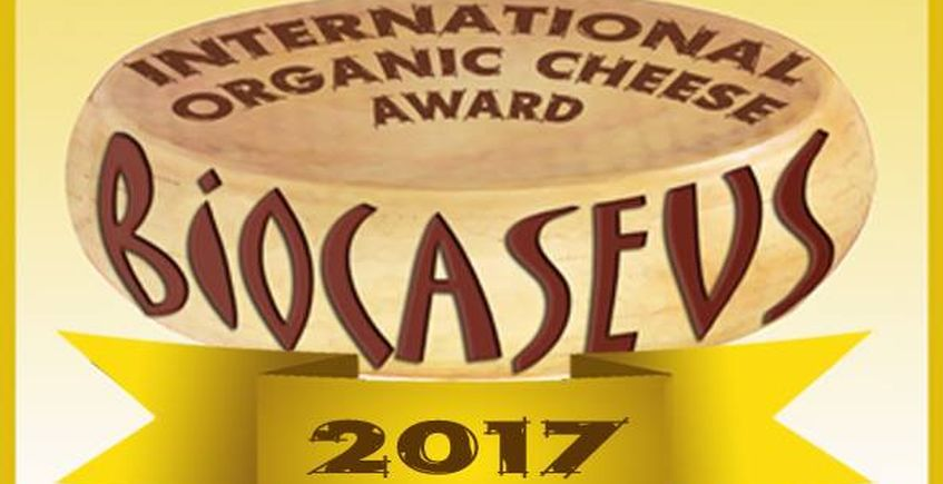 Premio a tres quesos de El Gazul