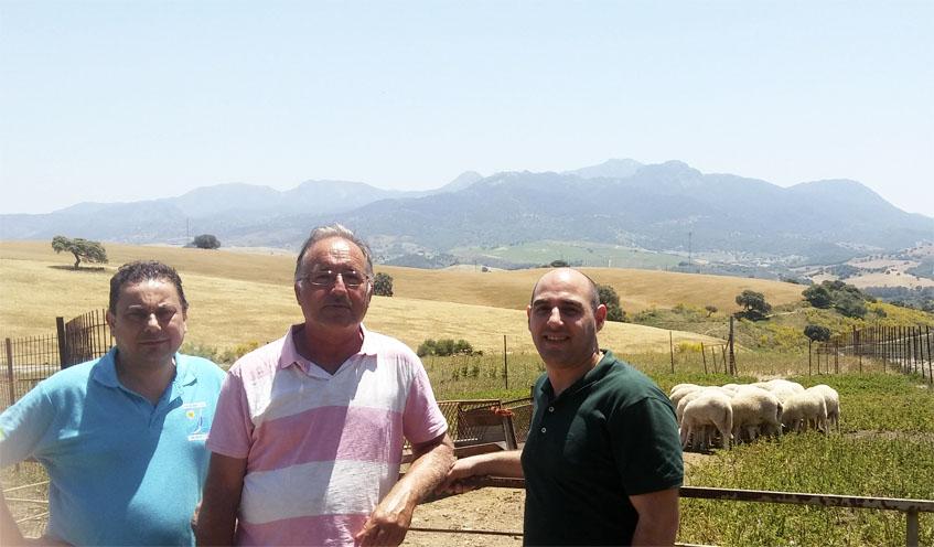 Enrique Moreno, Alvaro y Antonio Rodriguez junto a un rebaño de ovejas en el cortijo San José. Foto: Cosasdecome
