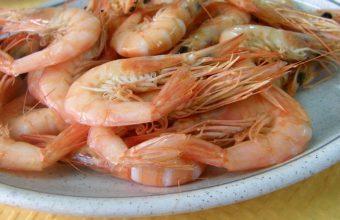 Cenas temáticas de mariscada en el Hontoria de Jerez del 29 de mayo al 8 de junio