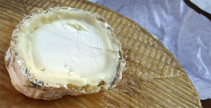 Queso rulo de oveja, nuevo producto de la quesería de Pajarete de Villamartín