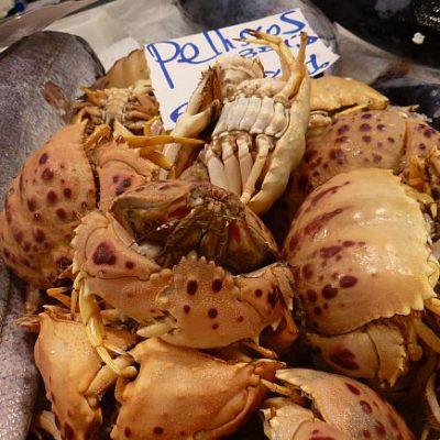 Pellizcos en el mercado de Cádiz la pasada semana