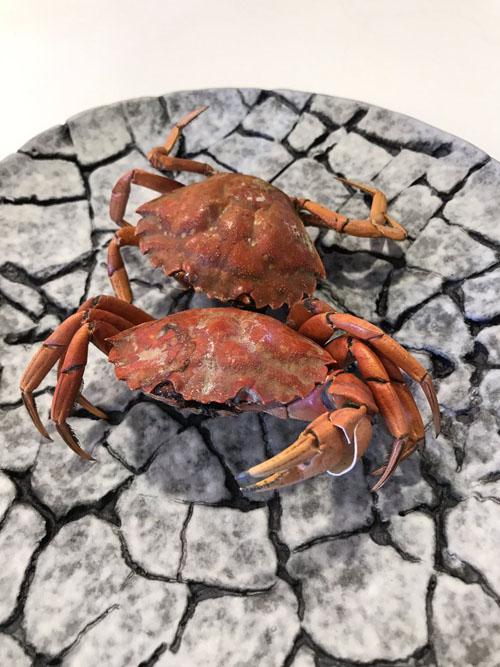 Uno de los platos de Aponiente fotografiados por Antonio Colsa.