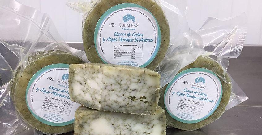 Suralgas presenta un queso semicurado de algas ecológicas