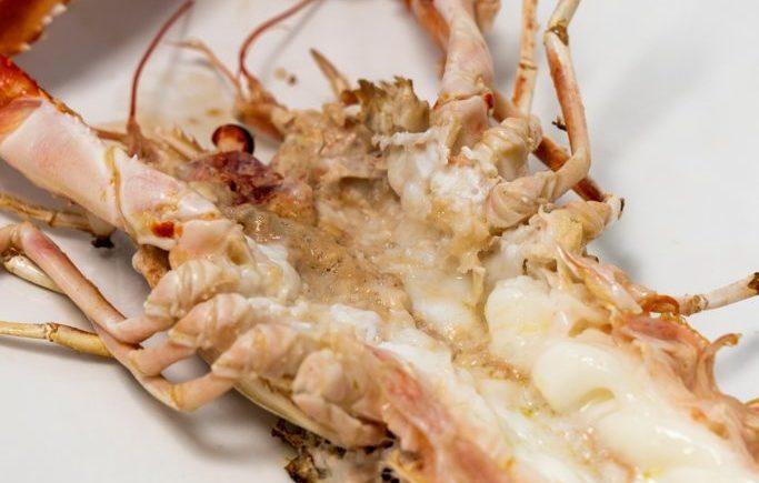 Cigala a la plancha en Restaurante Antonio de Zahara de los Atunes