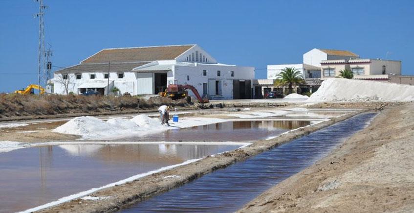 La sal de Bartivas de Chiclana obtiene el sello que la reconoce como producto ecológico