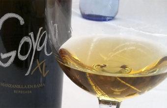 Goya XL de Delgado Zuleta