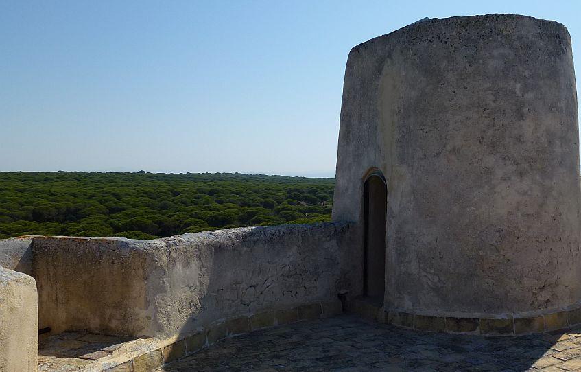 La Breña vista desde una antigua almazara, la Torre del Tajo.