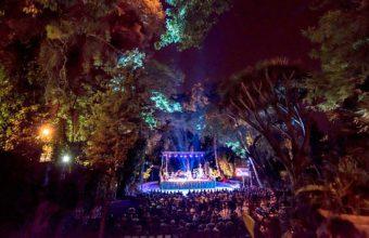 tio-pepe-festival-2-847