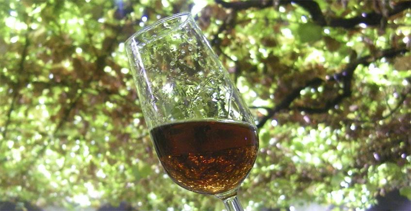 Chipiona, donde el vino toma el sol