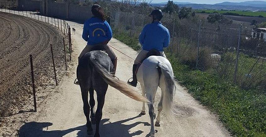 Un paseo a caballo. Foto del establecimiento.