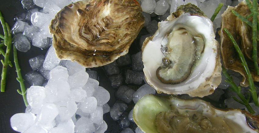 Las ostras de Cádiz, también a domicilio