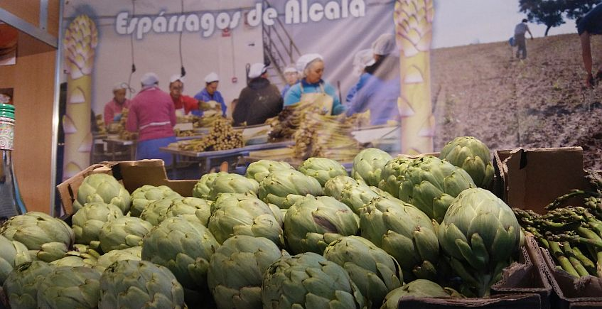 La alcachofa de Alcalá del Valle que triunfa en Ronda