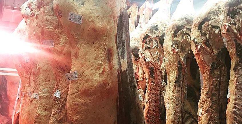 La Fábrica de Benalup comienza a vender el selecto buey gallego