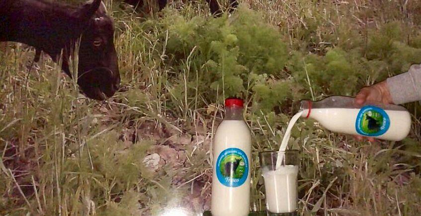 Los Hardales ya comercializa leche fresca de cabra