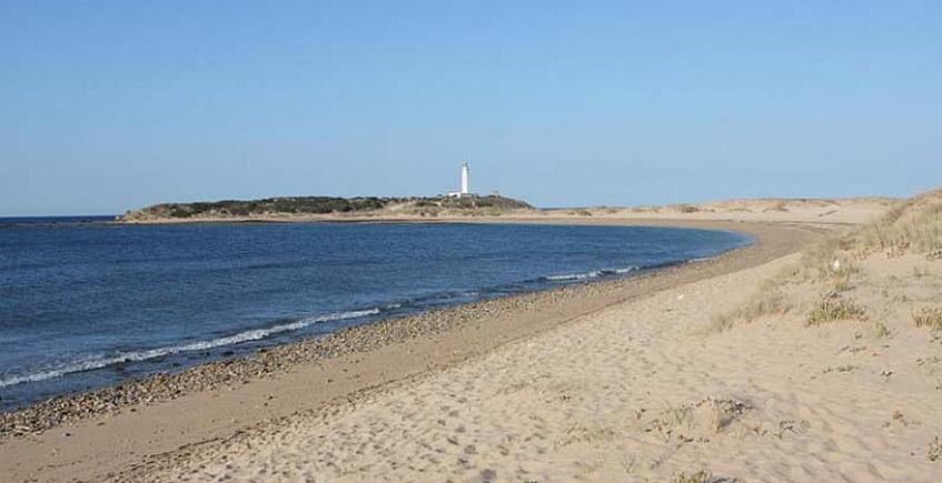 La playa. Foto del Ayuntamiento de Barbate.