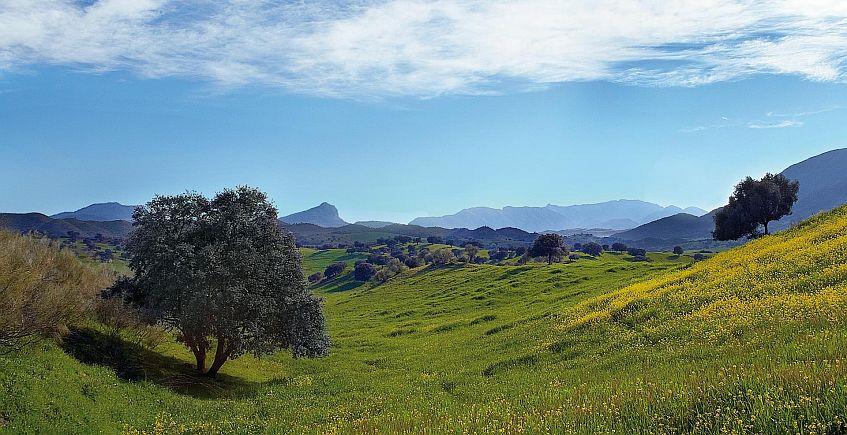 Paisaje de la vía. Foto de la Fundación Vía Verde de la Sierra.