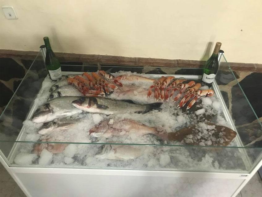 Expositor de pescados y mariscos en Casa José Luis. foto: Cedida por el establecimiento