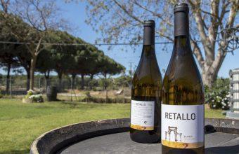 Retallo el nuevo vino blanco de las bodegas Manuel Aragón (El Sanatorio) realizado con uva Pedro Ximénez. Foto: Cedida por la bodega.