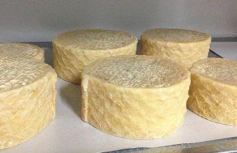 varios quesos847