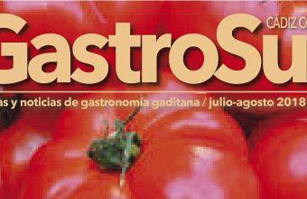 GastroSur 13.indd