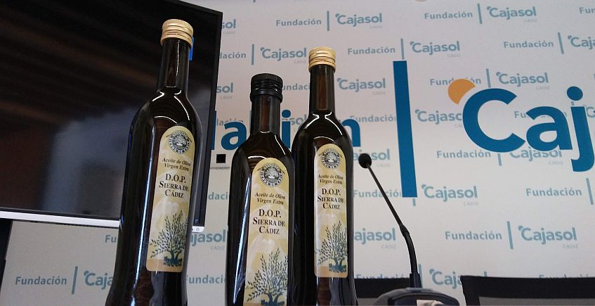 La denominación del aceite de oliva de la Sierra quiere crecer