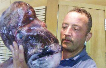 Eduardo Guardiola, uno de los propietarios de los restaurantes Tribeca y Cañabota con un ejemplar de pargo macho capturado en las costas de Cádiz. foto: Cosasdecome