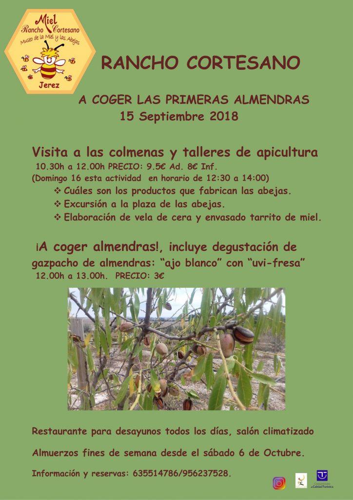 ALMENDRAS 12-09 -18 - copia_001