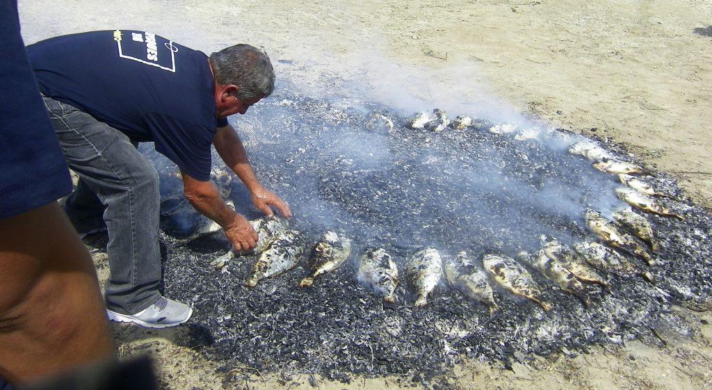 Los mariscadores Ricardo y Juan Ariza se encargaron de preparar el pescado. Aqui aparece asándose en los rescoldos de haber quemado las plantas que crecen en torno a los esteros. Foto: Cosasdecome
