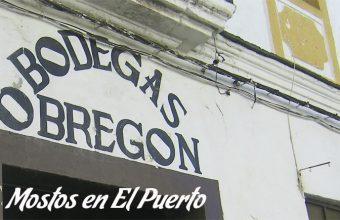 Mostos en El Puerto