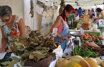 El Ecomercado cumple tres años en Los Toruños