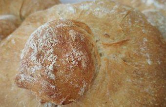 pan de la tahona 847