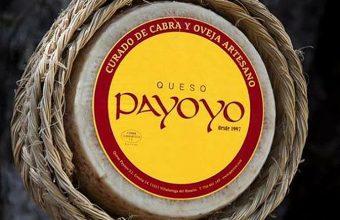 payoyo847