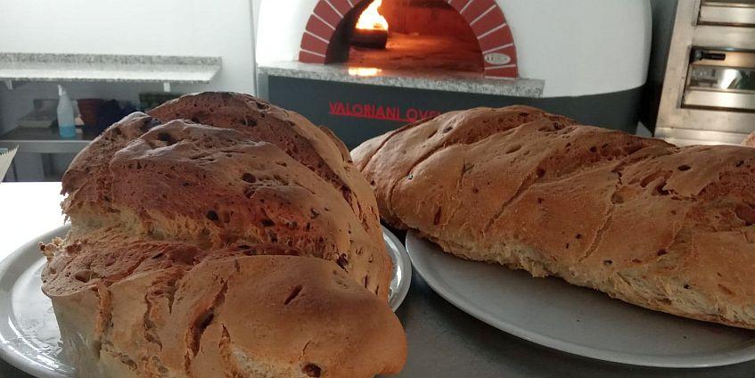 Los panes que elaboran en el establecimiento, recién salidos del horno.