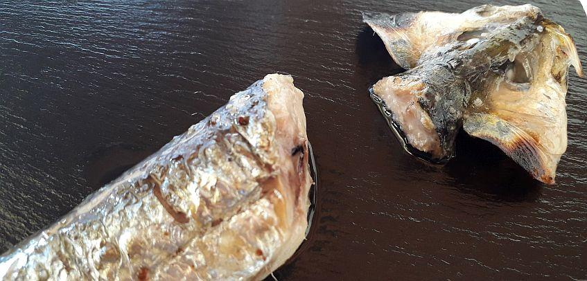 la sardina de cataria