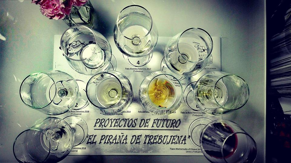 Tanto la imagen superior como esta son de The Wine Room Club de Vinos de San Fernando y corresponden a la cata de los vinos de El Piraña.