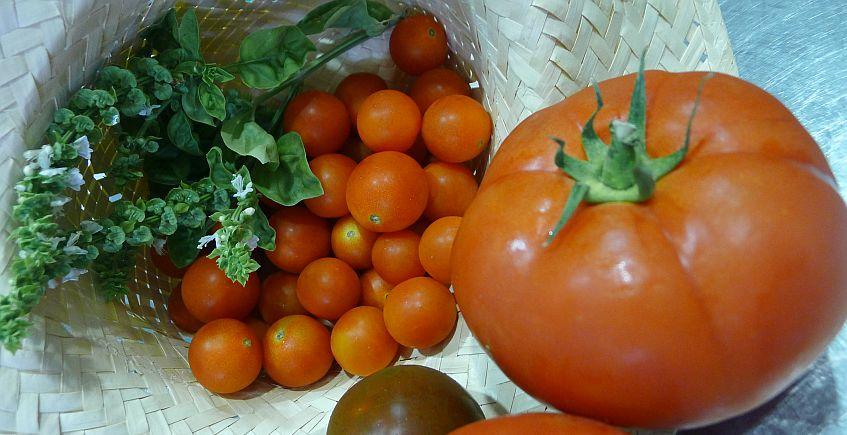 verduras847