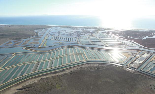 Esteros de Lubimar en Barbate. Foto: Cedida por Lubimar