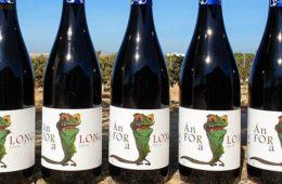 Forlong saca un nuevo vino de tintilla, un camaleón de Ánfora