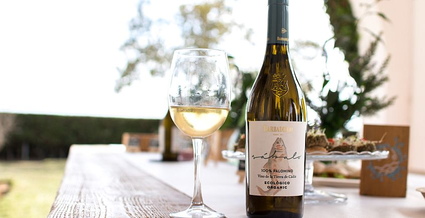 Barbadillo presenta su nuevo vino blanco ecológico, Sábalo