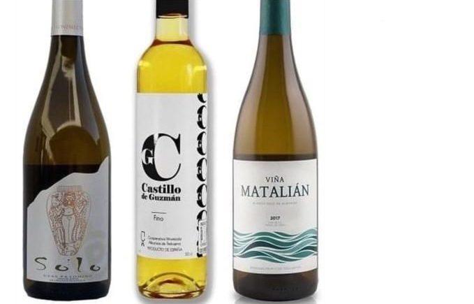 Cata virtual y solidaria de Andalucía de Vino