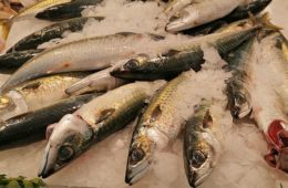 El pescado apiriñacado