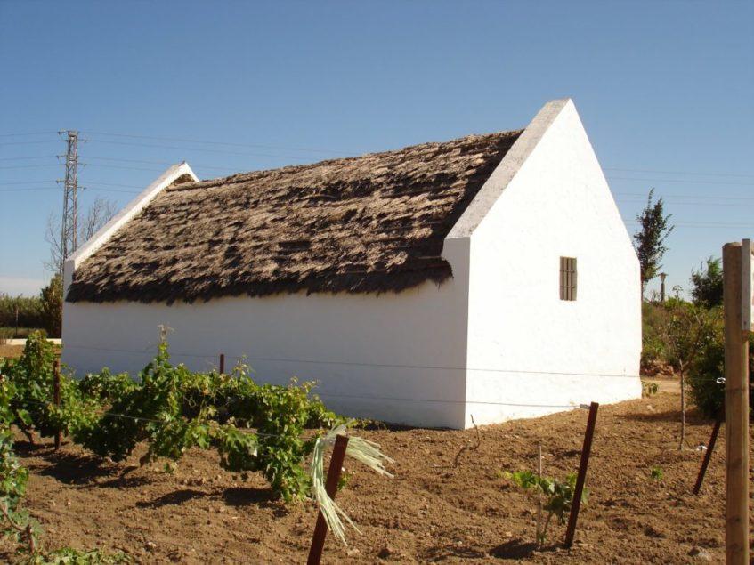 En el Centro de Interpretación de la Mayetería Roteña se explica cómo se prepara el arranque. Foto cedida por el Consistorio local