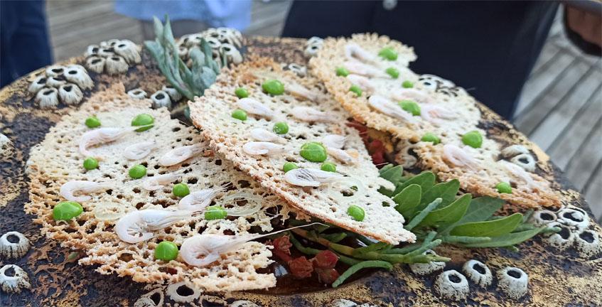 Tortillita d camarones 2020
