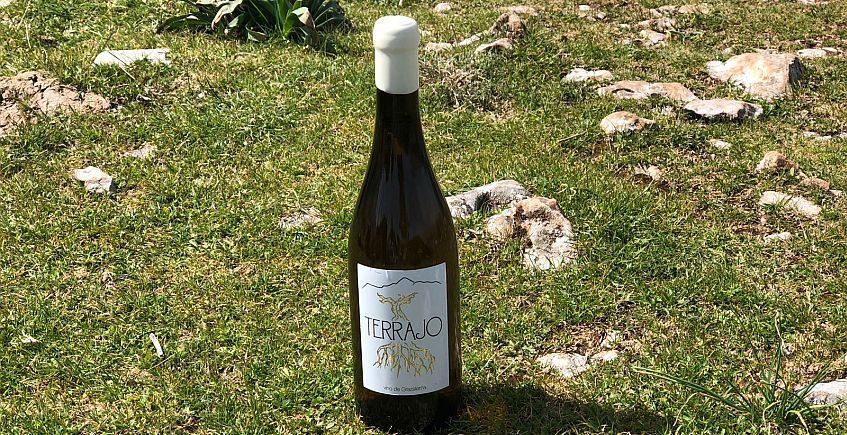 Terrajo, el vino de Grazalema de viñas centenarias