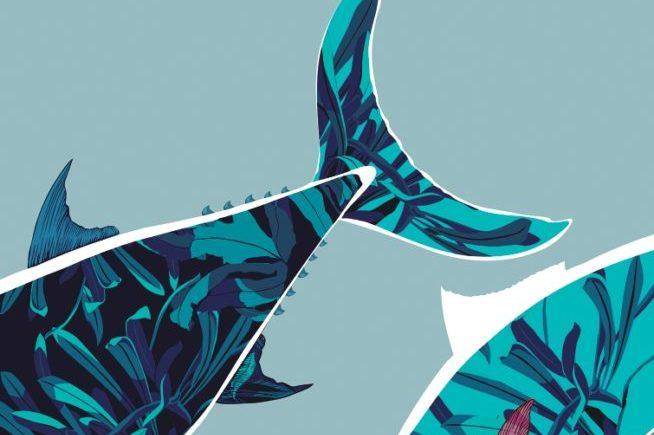 Ruta del atún de Conil