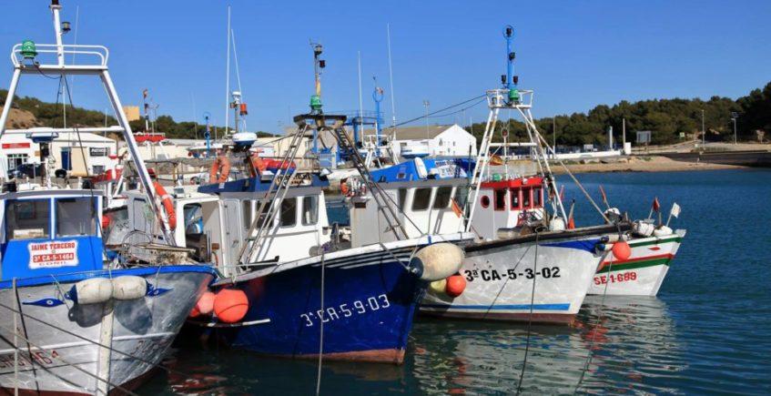 8 puerto pesquero
