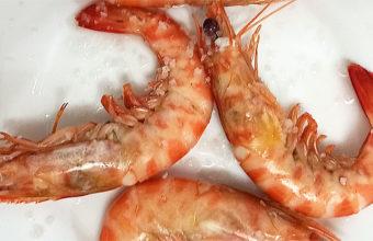 Los langostinos cocidos de La Espuela II